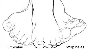 pronáló láb